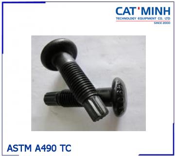 Bu lông ASTM A490 TC